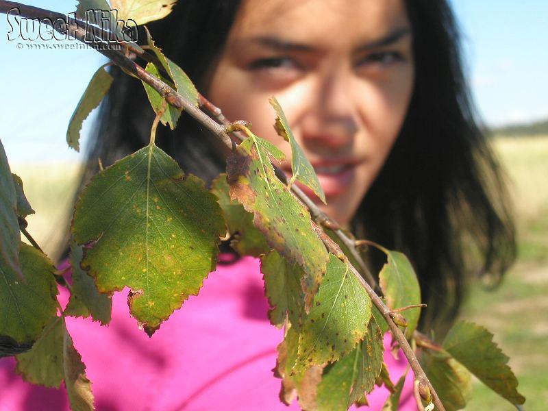 Nika en el campo